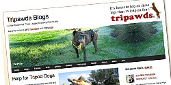 tripawds three legged dog blogs